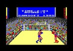 3D Boxing screenshot 1